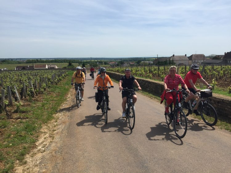 7 - Visite à vélo - Bourgogne