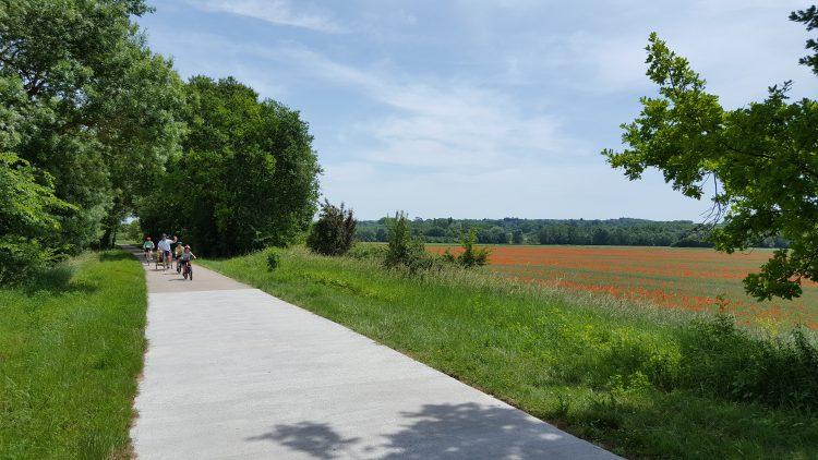 6 - Bike tour - Loire