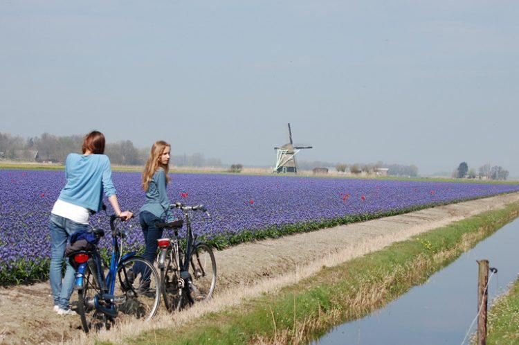 3 - France à vélo - Netherlands