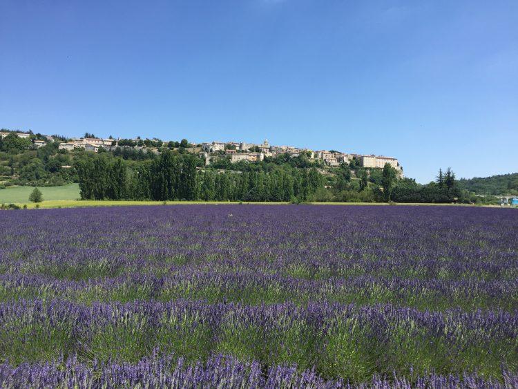 2 - Vacances à vélo - Provence
