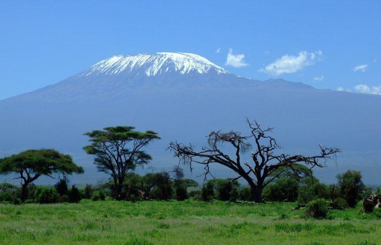 View of the Kilimanjaro